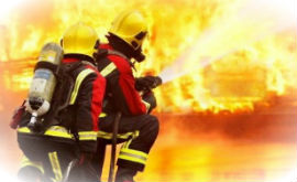 Fire Doors could be attributed to the 10% fewer fatalities due to fires recorded in 2013